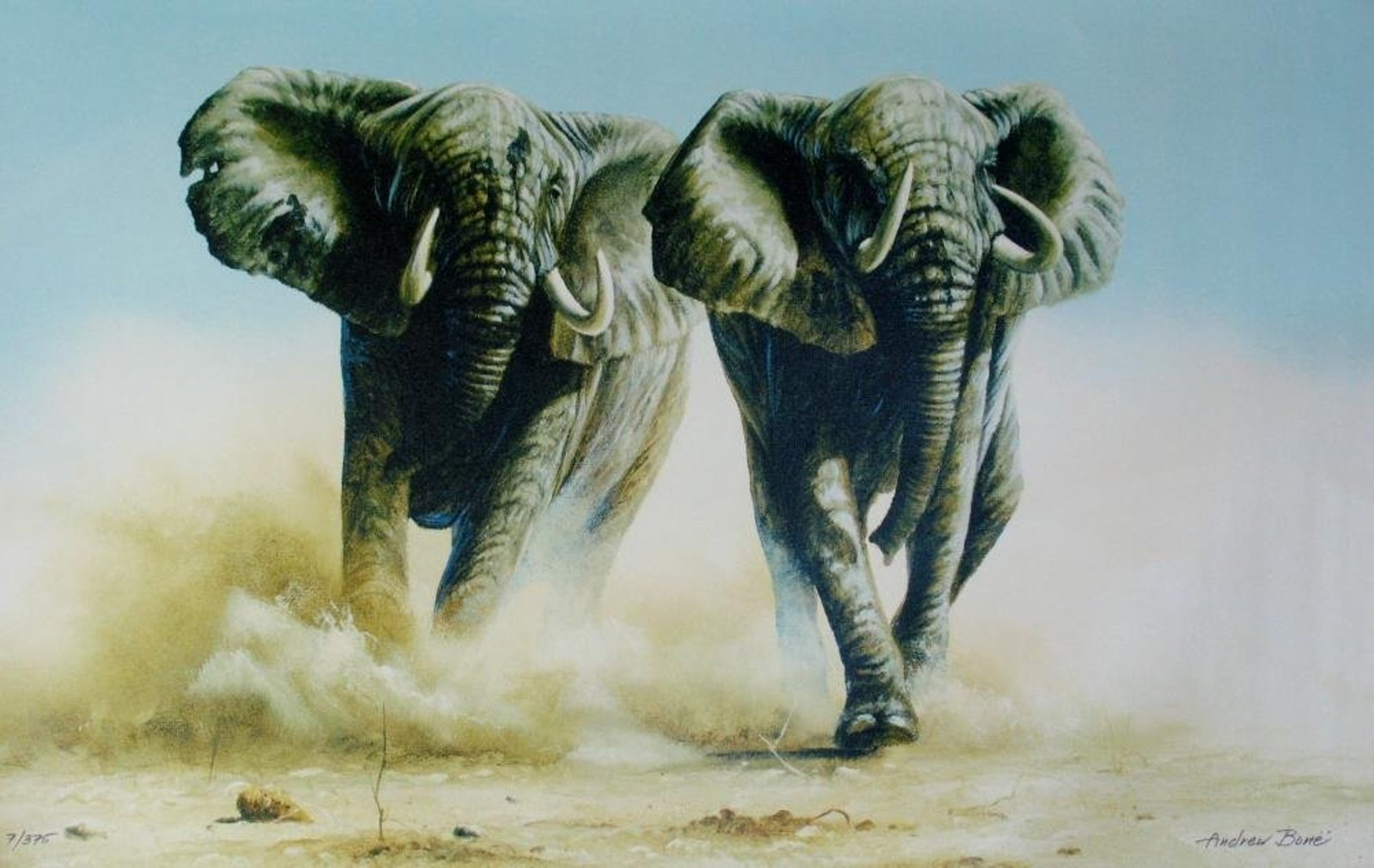 Elephant Stampede by Andrew Bone